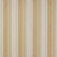 Arlay Stripe (F4203-02)