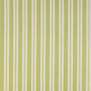 Salthouse Stripe (J696F-04)