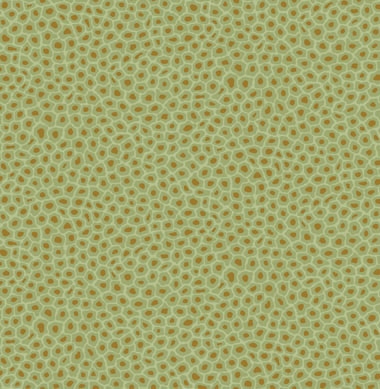 109 6029 Senzo Spot Cole Son Ardmore Collection Lines Of