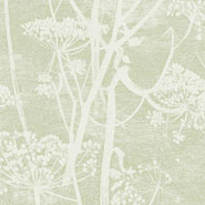 Cow Parsley (112-8029)