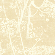 Cow Parsley (66-7049)