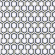 Hick's Hexagon (66-8055)