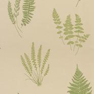 Botanica (CH9098-040)