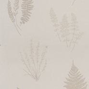 Botanica (CH9098-095)