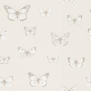 Papilio (CH9101-070)