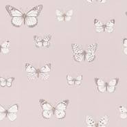 Papilio (CH9101-080)