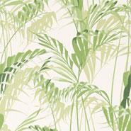 Palm House (DGLW216643)