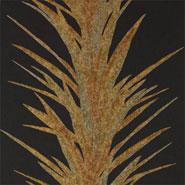 Yucca (DGLW216651)