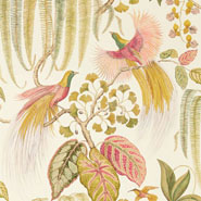 Bird Of Paradise (DGLW216653)