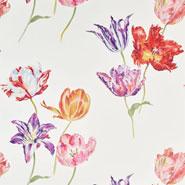 Tulipomania (DGLW216666)